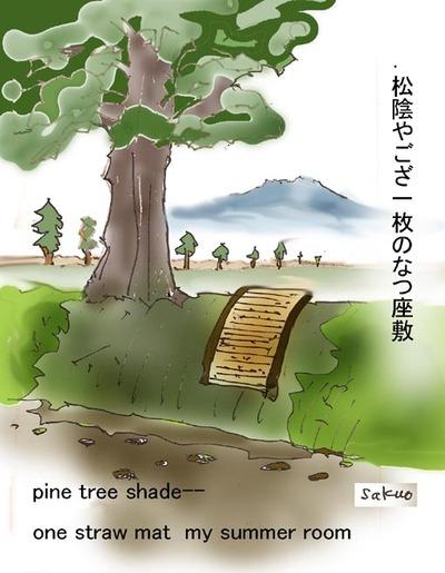 070725_pine_tree_shade_ops