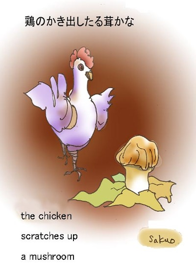 070919_the_chicken_s_op