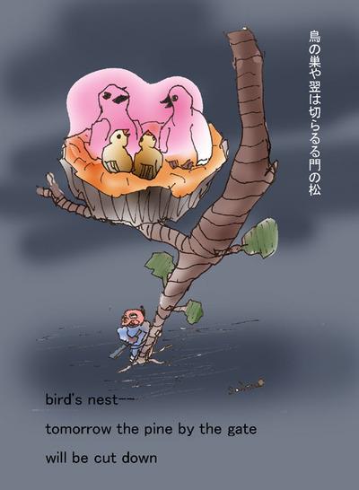 080117_birds_nest_s