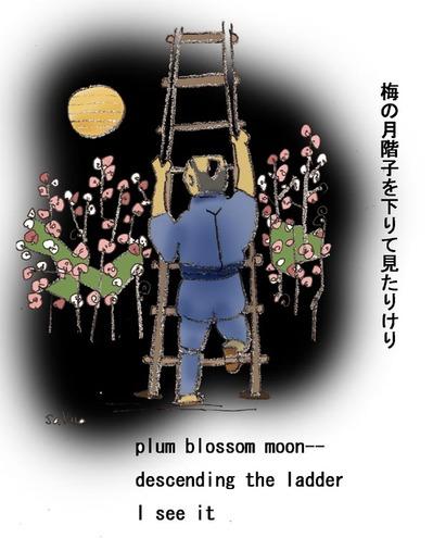 Plum_blossom_moon_opening_s